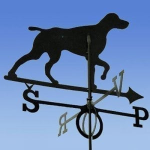 Weathervane Dog