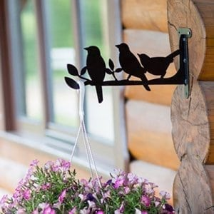 Hanging basket brackets Birds